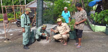 Lanjutan Pemasangan Patok Tanah Kas Desa